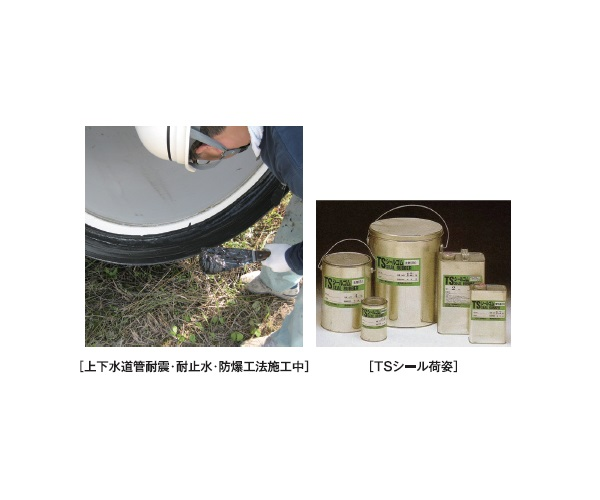 TS Seal Product and Process画像