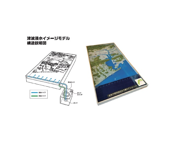 Tsunami Inundation Image Model画像